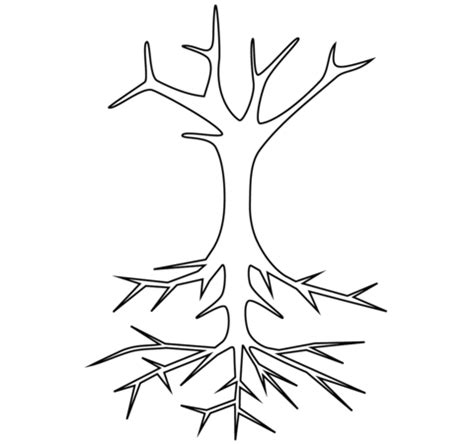 bare tree  roots coloring page  printable