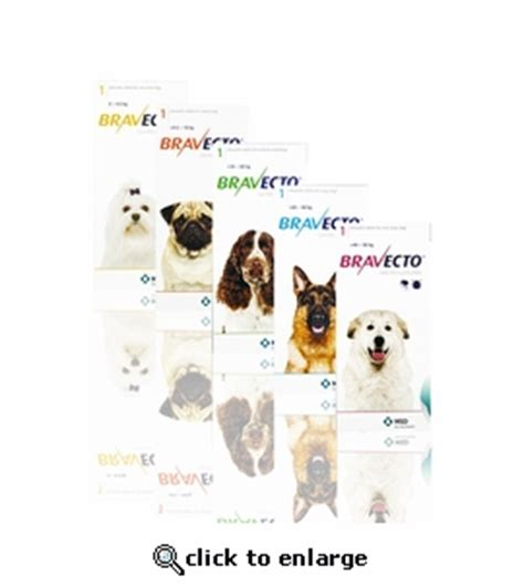 bravecto for dogs 22 44 lbs bravecto 500 mg for dogs 22 44 lbs 3 tablets