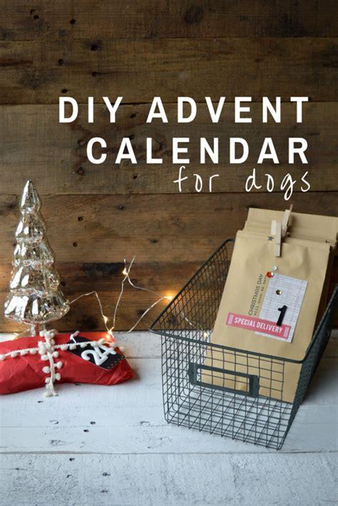 Diy Advent Calendar Diy Advent Calendar For Dogs My Big Happy