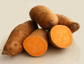 what color are yams science is growing agbcs y is for yams