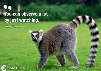 can you observe a lot just by watching quote you can observe a lot just by watching