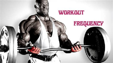 workout frequency bodybuilding wizard