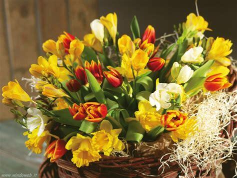 foto con fiori per compleanno immagini fiori per auguri