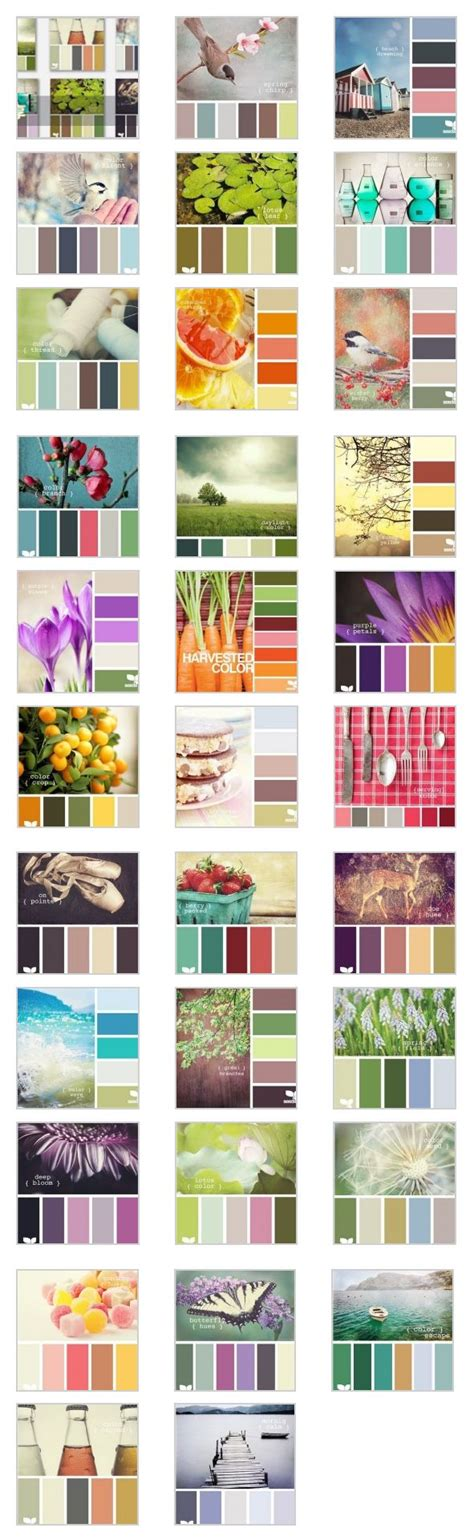 great color combinations 67 best images about crochet yarn color chart on pinterest