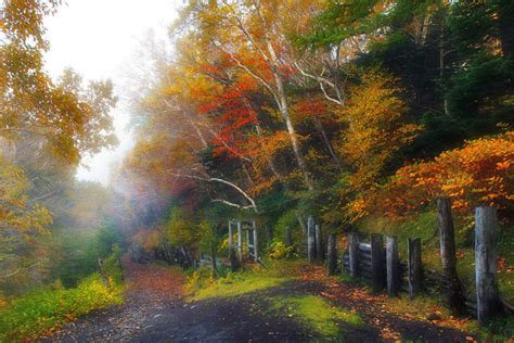 fall fog   mountain hd picture nature stock photo