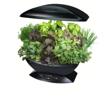 hydroponic herb garden kit aerogarden tabletop aeroponic garden inhabitat sustainable design innovation eco