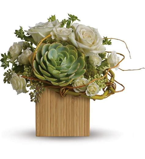 Succulent Arrangements bamboo mojave tfweb617 50 36