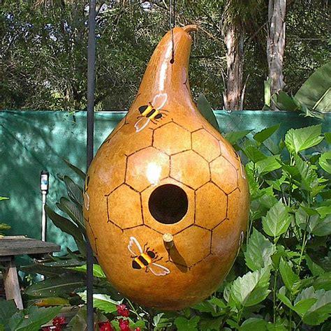 bird house gourds australian seed gourd birdhouse