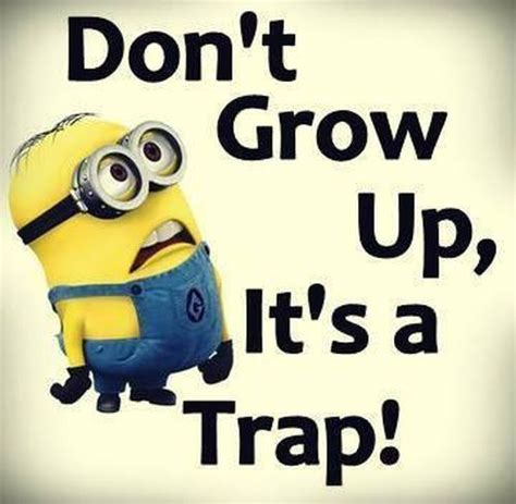 Dont Bet On It don t grow up it s a trap pictures photos and images