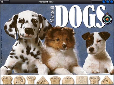 Pc Dogs microsoft dogs pc review and pc gaming