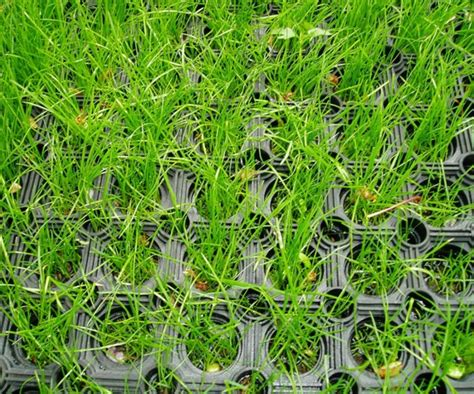 Commercial Grass Seed Mats by Grass Safety Mats For Commercial Swing Parks I Caledonia Play