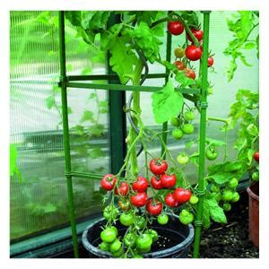 tomato cage plant support harrod horticultural uk