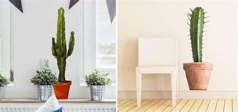 decorare pareti soggiorno adesivi murali cactus idee per decorare pareti salotto