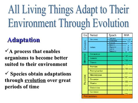 evolution how adapts to a changing environment with 25 projects build it yourself books characteristics of