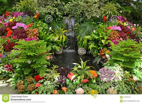 Garden Flowers A Z Colorful Tropical Garden Stock Photo Image 57200742