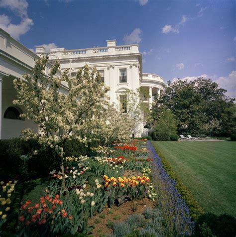 white house rose garden kn c27975 white house rose garden john f kennedy presidential library museum