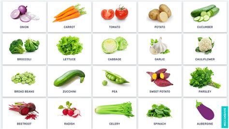 d vegetables name vegetable names in