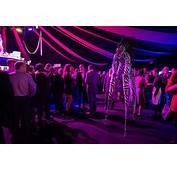 Amazing Christmas Parties In Milton Keynes