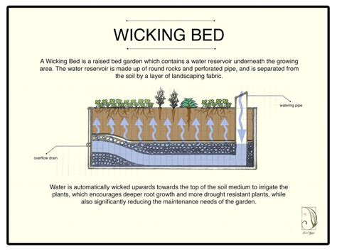 wicking beds wicking bed 1 diy pinterest gardens irrigation and