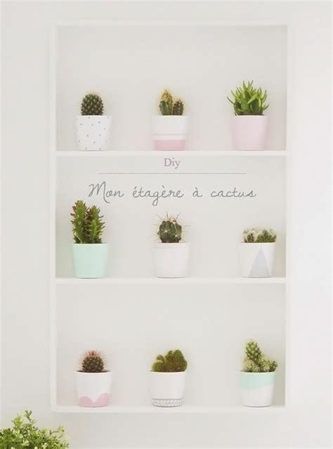 mini etagere mon 233 tag 232 re 224 cactus cacti plants and gardens