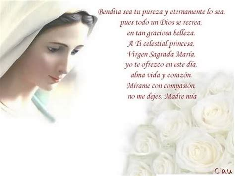 oracion con imagen a 6 meses de una hermana fallecida 13 best images about oraciones catolicas on pinterest