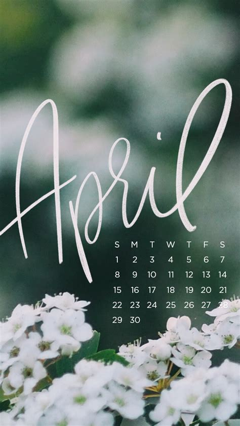downloadable tech backgrounds  april  everygirl