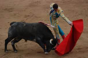 are bulls color blind 10 completely false facts most still believe
