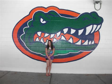 florida gators fan club university of florida images meeee hd wallpaper and