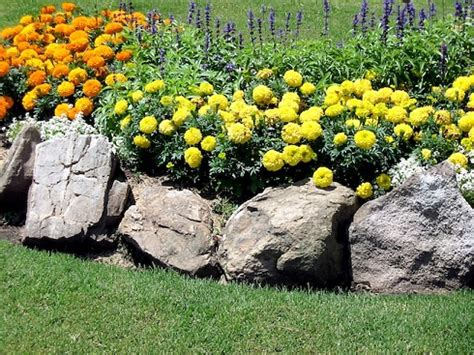fiori per aiuole estive arredare il giardino la base dell aiuola pollicegreen