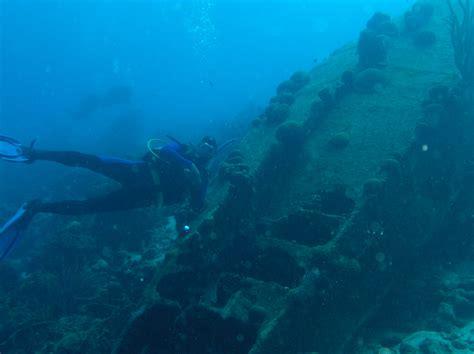 bonaire dive bonaire diving images