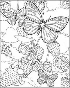 butterflies coloring book for adults books welcome to dover publications