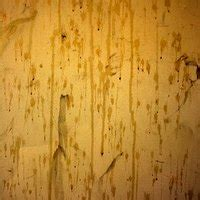 How To Remove Dried Paint From Wood Floors Ehow