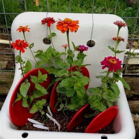 Throw Kitchen Sink Don T Throw Out The Kitchen Sink Garden Planters Backyard Ideas Decorating Ideas Ideas