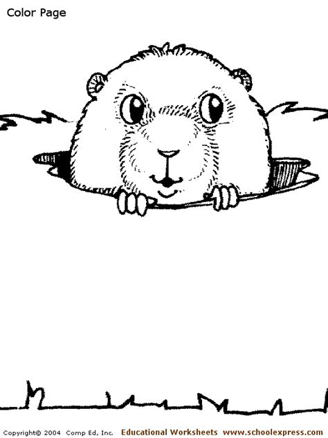 coloring sheets prairie dogs gopher coloring pages getcoloringpages com