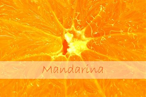 mandarin color color mes mandarina casas que inspiran
