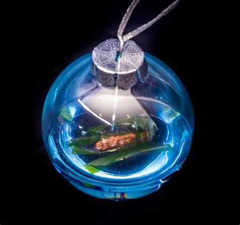 sea otter ornament eb ornaments