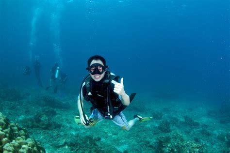 dive in bida nok dive koh phi phi diving