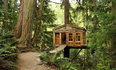 seattle treehouse point featured in animal planets treehouse blogs playatlanta