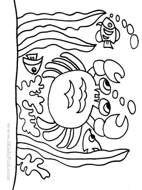 superior pictures of ocean animals to color fr 1746 unknown