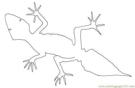 desert lizard coloring page free desert lizard coloring pages