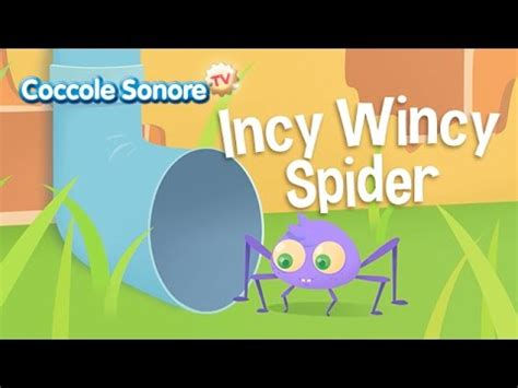 whiskey il ragnetto testo incy wincy spider canzoni per bambini coccolesonore