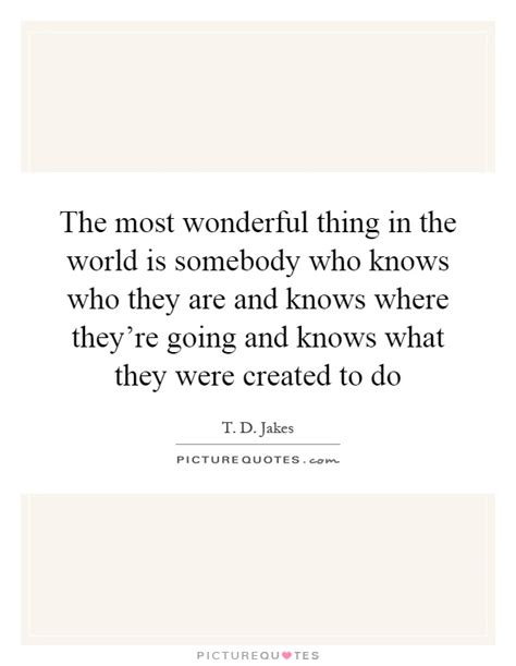 the most wonderful thing the most wonderful thing in the world is somebody who knows who picture quotes