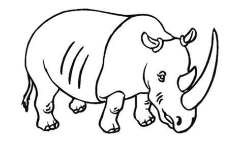 kartun lucu  kitty  gambar halaman mewarnai warna gambar hewan