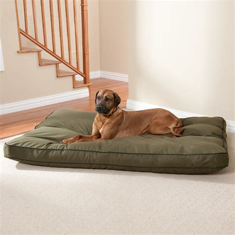 halo dog bed beds plush pet furniture kohl s