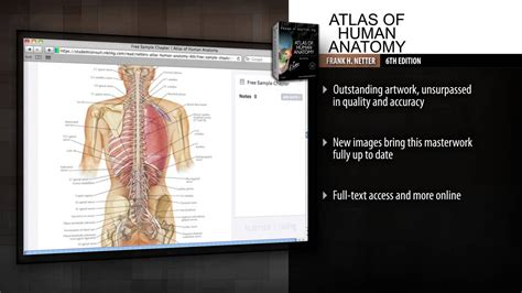 Atlas Of Human Anatomy Frank H Netter 6th Edition netter atlas of human anatomy 6th edition weekend hd