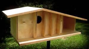 cool bird house plans the modern birdhouse build blog
