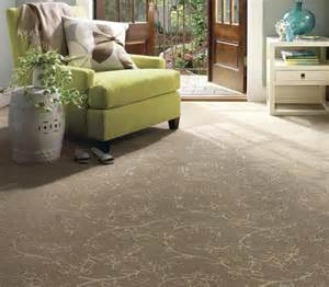 Home design ideasjpg room carpet home design ideas mefunnysideup co