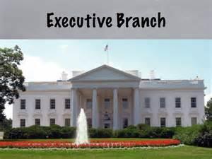 u s executive branch curious