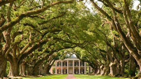 oak alley plantation new orleans plantation country visit laura plantation and oak alley new orleans