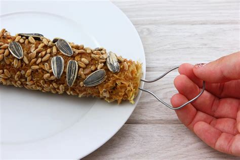 homemade bird food with peanut butter birdcage design ideas